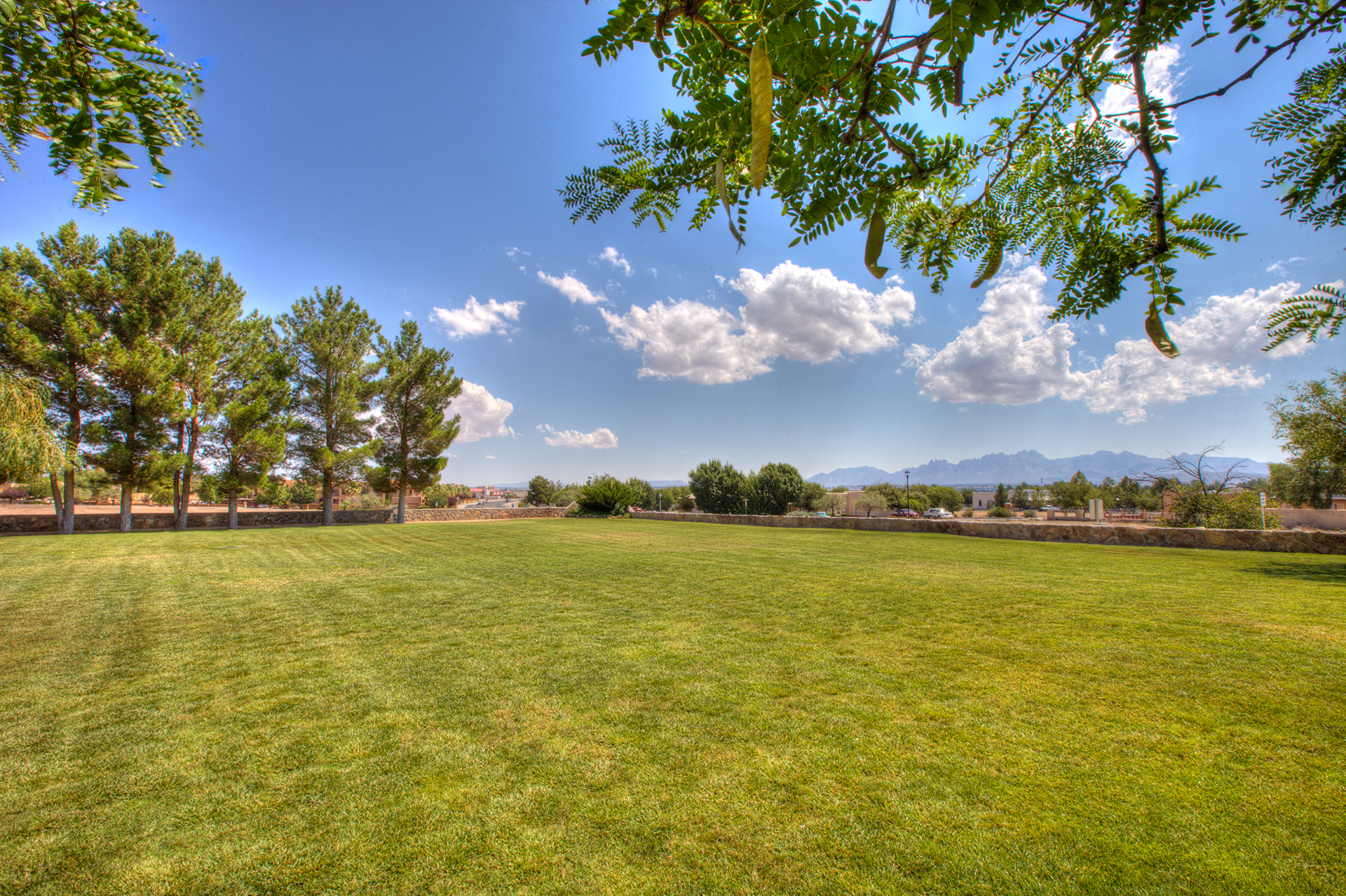 Beautiful outdoor event space on our lawn at D.H. Lescombes Winery & Bistro in Las Cruces gives a great view of the Organ Mountains to the east.